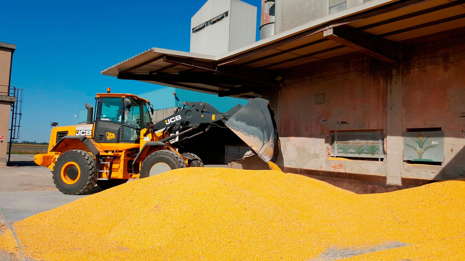 Cooperativa Servizi Mezzano, servizi per la cotivazione dei cereali, del pomodoro, dell'asparago e fornitura di concimi, sementi, antiparassitari, prodotti petroliferi, mangimi semplici e quant'altro utile alle produzioni agricole